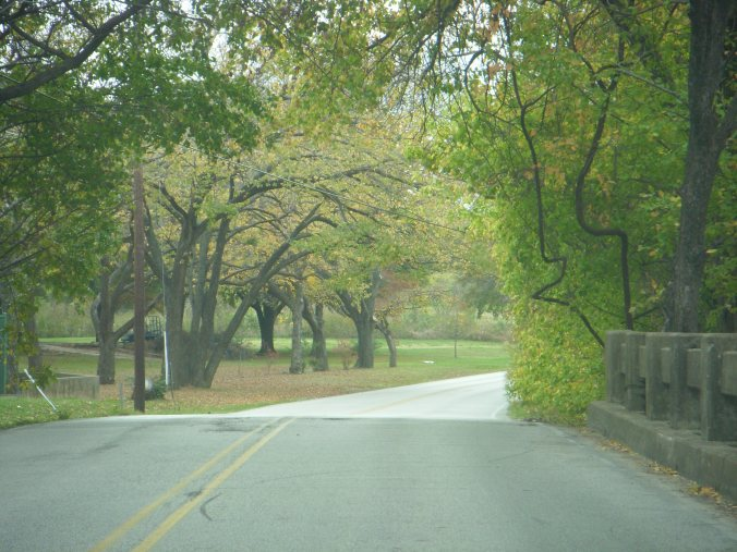 On my way to work when I lived in Texas.  It was neat to see this roadway change with the seasons