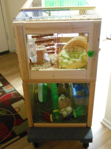 Front half-door of cage bars on top of solid plexi panel allows access to play and feed, and a solid cat-proof bottom half for visibility and light.  Note the glass Mickey Mouse door knob (from Disney World).